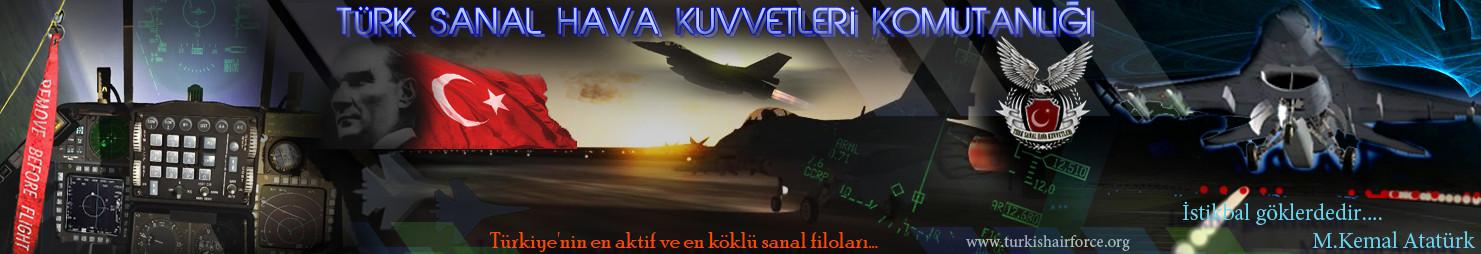 Sanal Havacılık, Sanal Filo, Falcon BMS, Hava Kuvvetleri